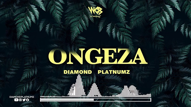 Diamond Platnumz Ongeza Lyrics
