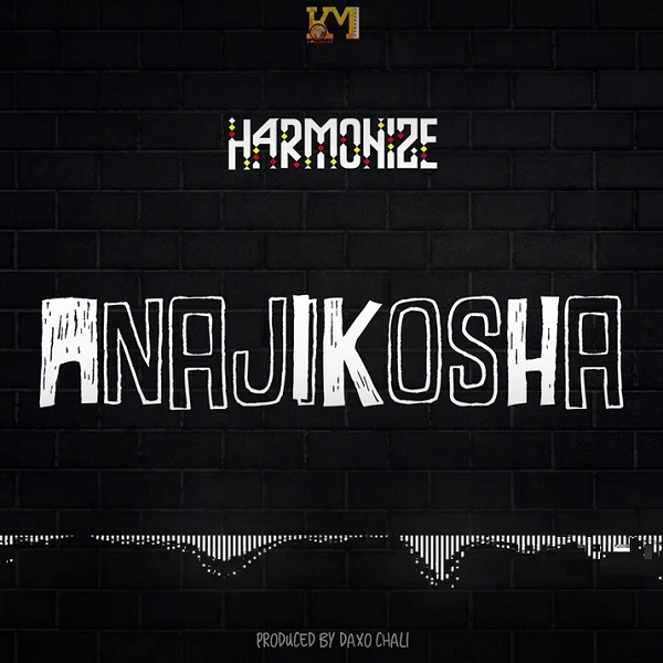 Harmonize Anajikosha Lyrics