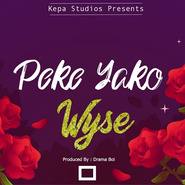 Wyse Peke Yako Lyrics