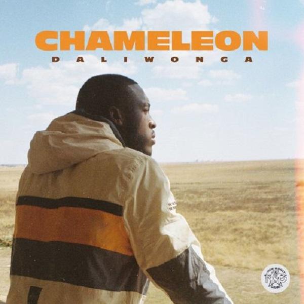 Daliwonga Chameleon Album Lyrics