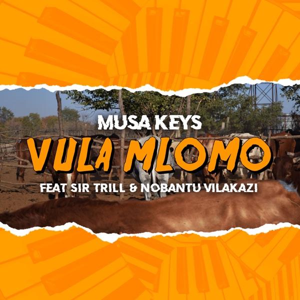 Musa Keys Vula Mlomo Lyrics