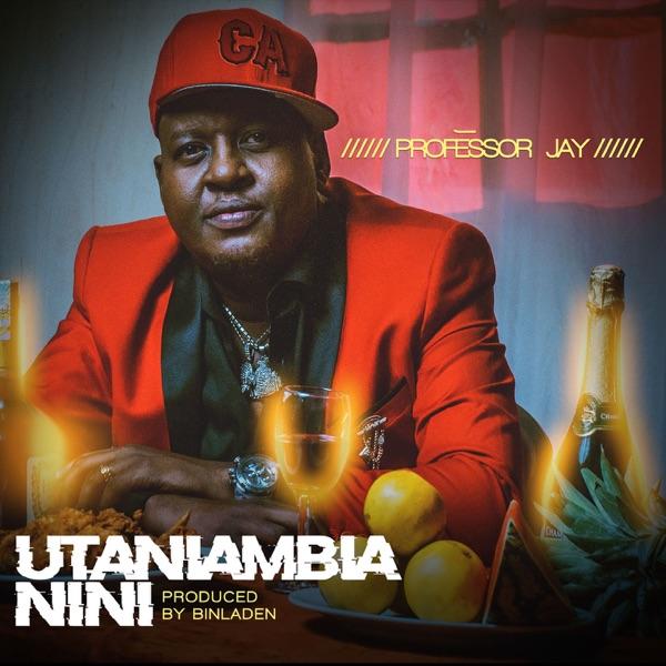 Professor Jay Utaniambia Nini Lyrics