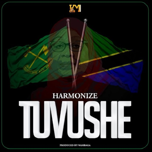 Harmonize Tuvushe Lyrics