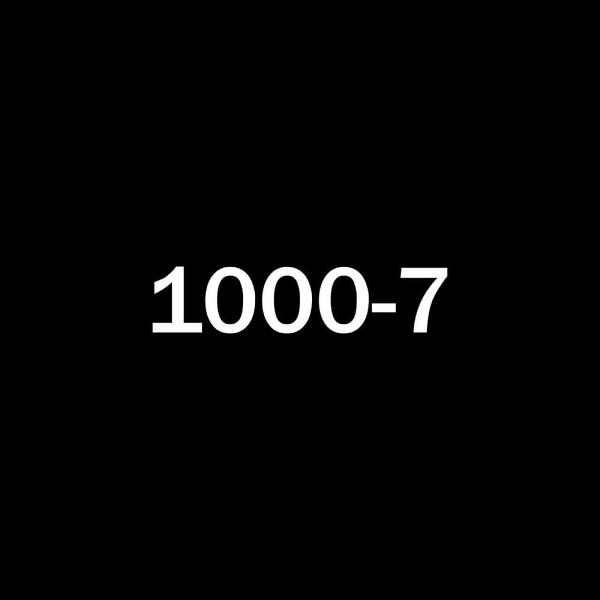 fem.love 1000 7 Lyrics