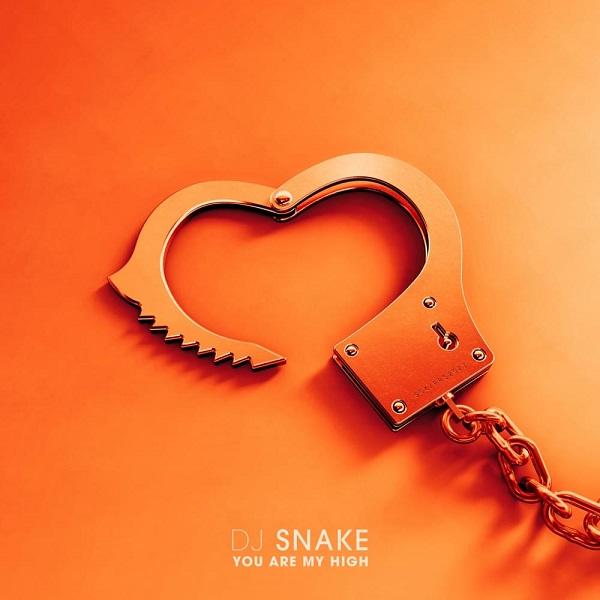 DJ Snake You Are My High Lyrics